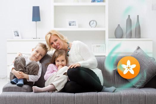 comment purifier l air et pr venir les maux de l hiver neroliane. Black Bedroom Furniture Sets. Home Design Ideas